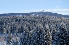 Waldwinter