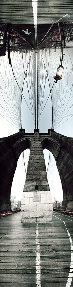 walk! look up! flip over! then walk on the sky..