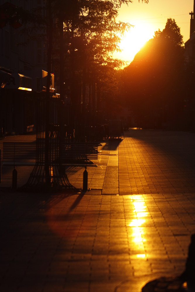 Walk the sun