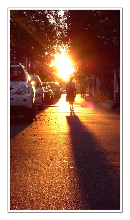 Walk The Sunray