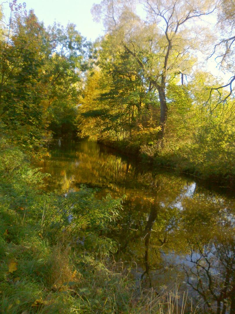 walk through autumn landscape