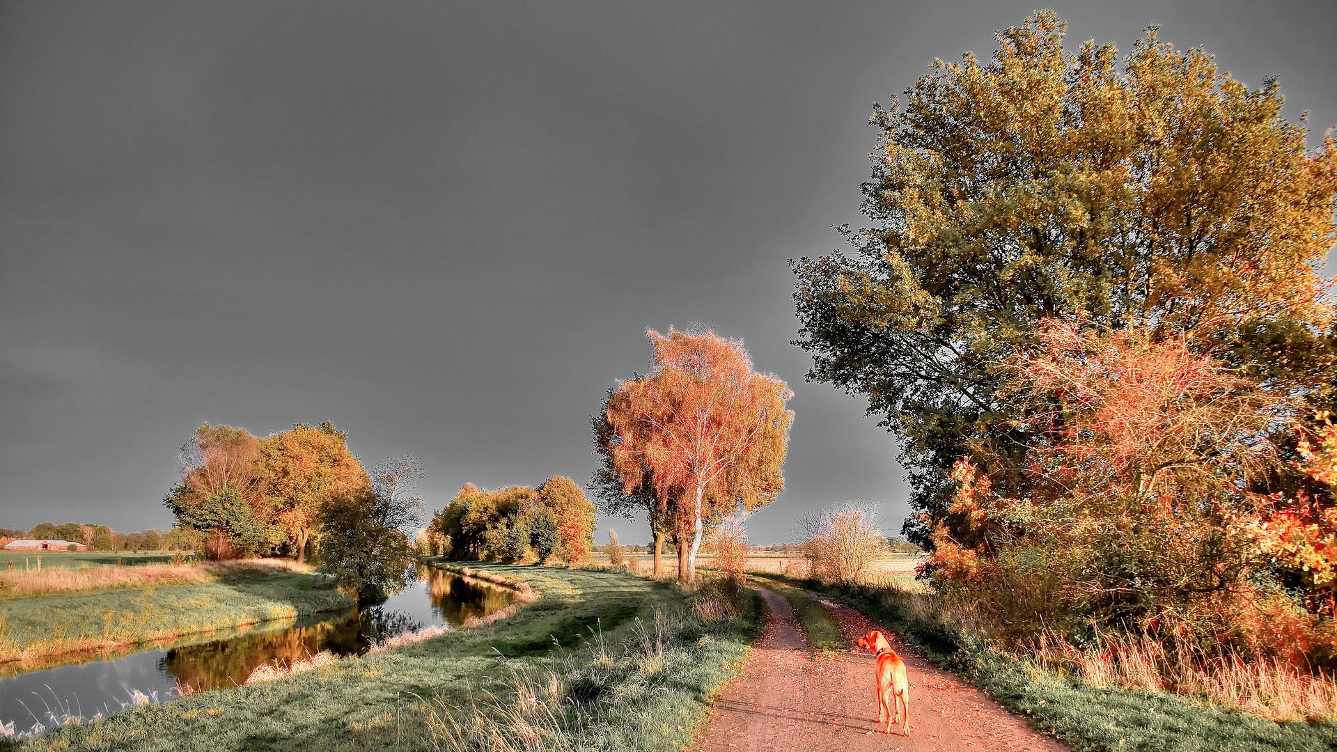 Walkin` on the way of life...