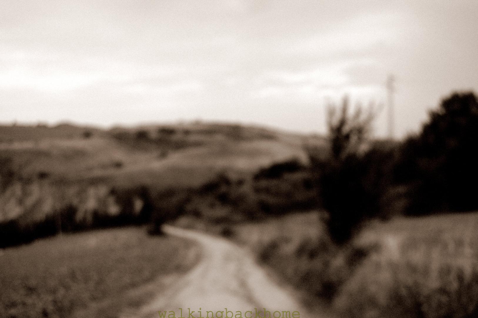 walking back home (photowalking)