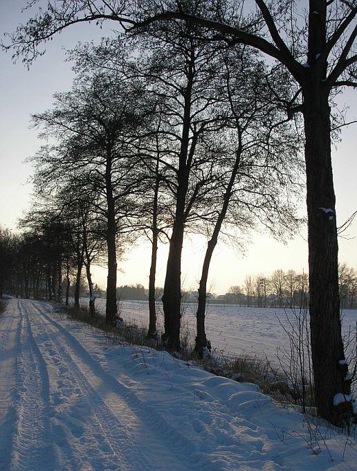 walking in the winterwonderland...