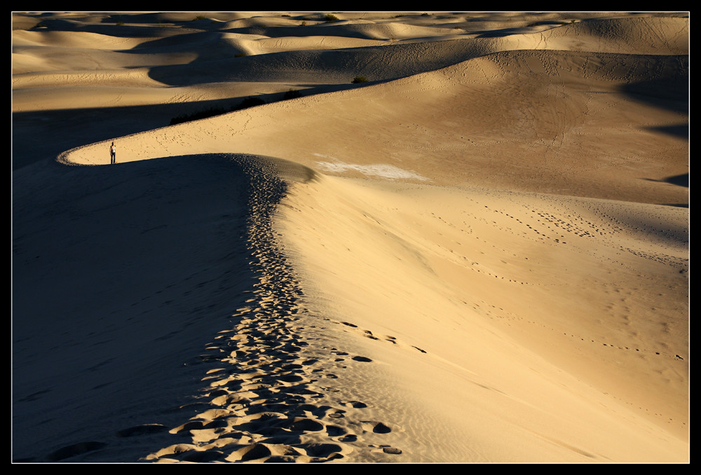 Walking On The Dunes Of Death Valley (California / Nevada)