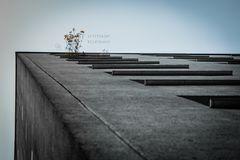 Walking on the edge