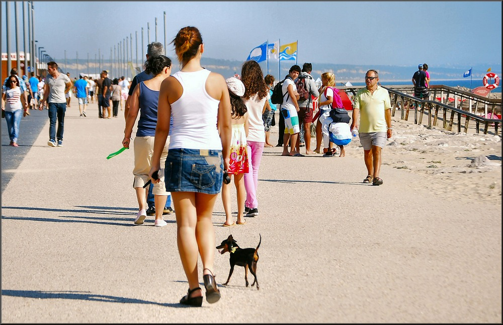 Walking with little dog