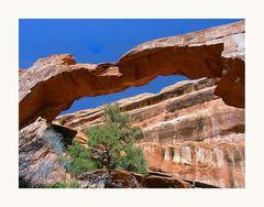 Wall Arch