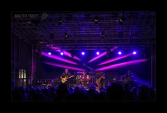 Walter Trout Live 2016