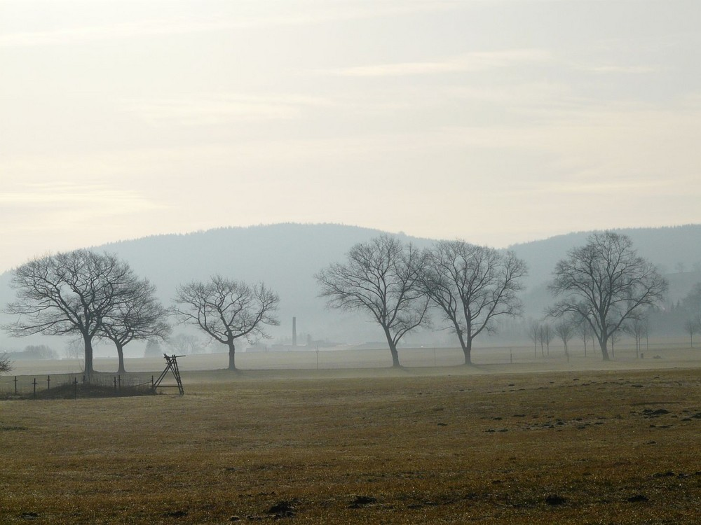 Waltersdorf im Morgenlicht