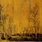 Wand Bild