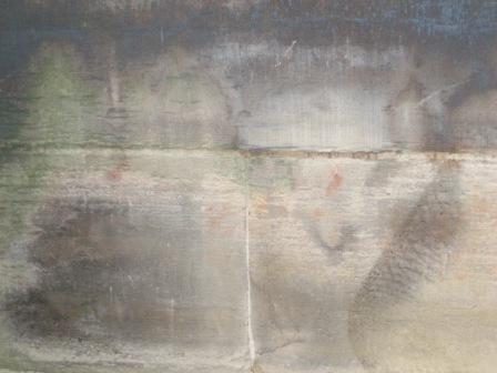 Wandbilder Katze