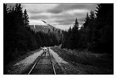 Wanderin in der Spur