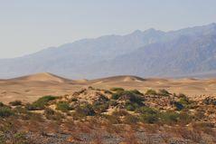 wandering dunes ...