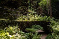 Wandern durch den Uttewalder Grund