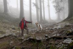 Wandern im Nebel 1