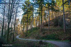 Wanderpfad Jägerweg Kappelwindeck