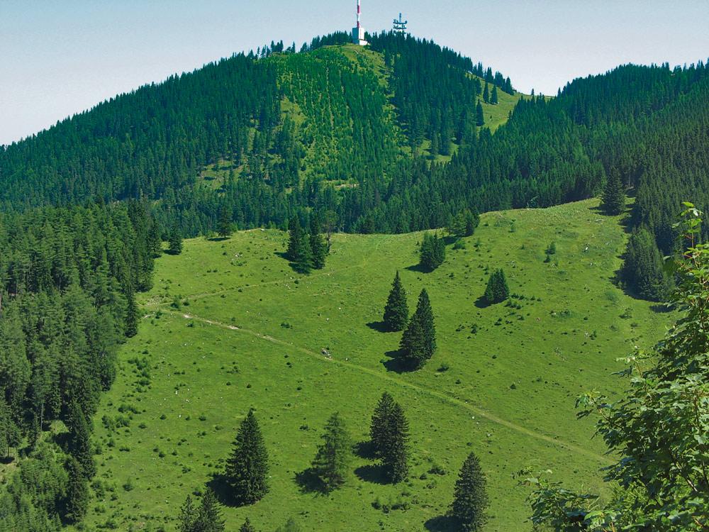Wanderung auf dem Semmering Richtung Sonnwendstein