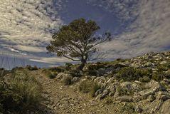 Wanderung auf Mallorca