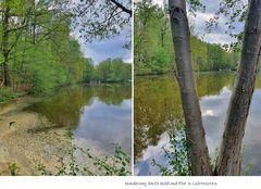Wanderung durch Wald und Flur_2