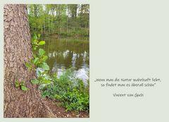 Wanderung durch Wald und Flur_5