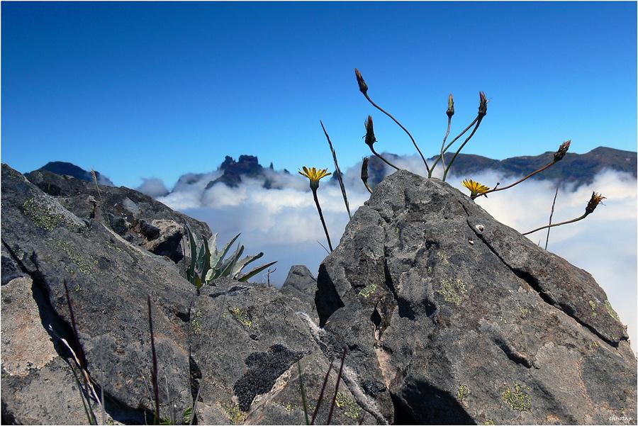 Wanderung zum Pico Grande 2