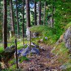 Wanderweg  Kilcherbergen - Silenen