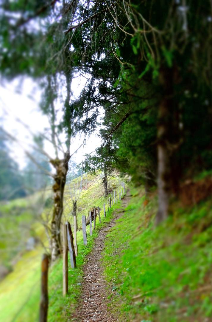 Wanderweg, Lungenstutz, Maderanertal