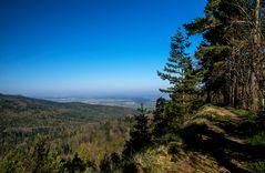 """Wanderweg """"Traufgang Zollernburg Panorama"""""""
