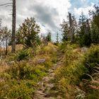 Wanderweg zum Siebensteinkopf