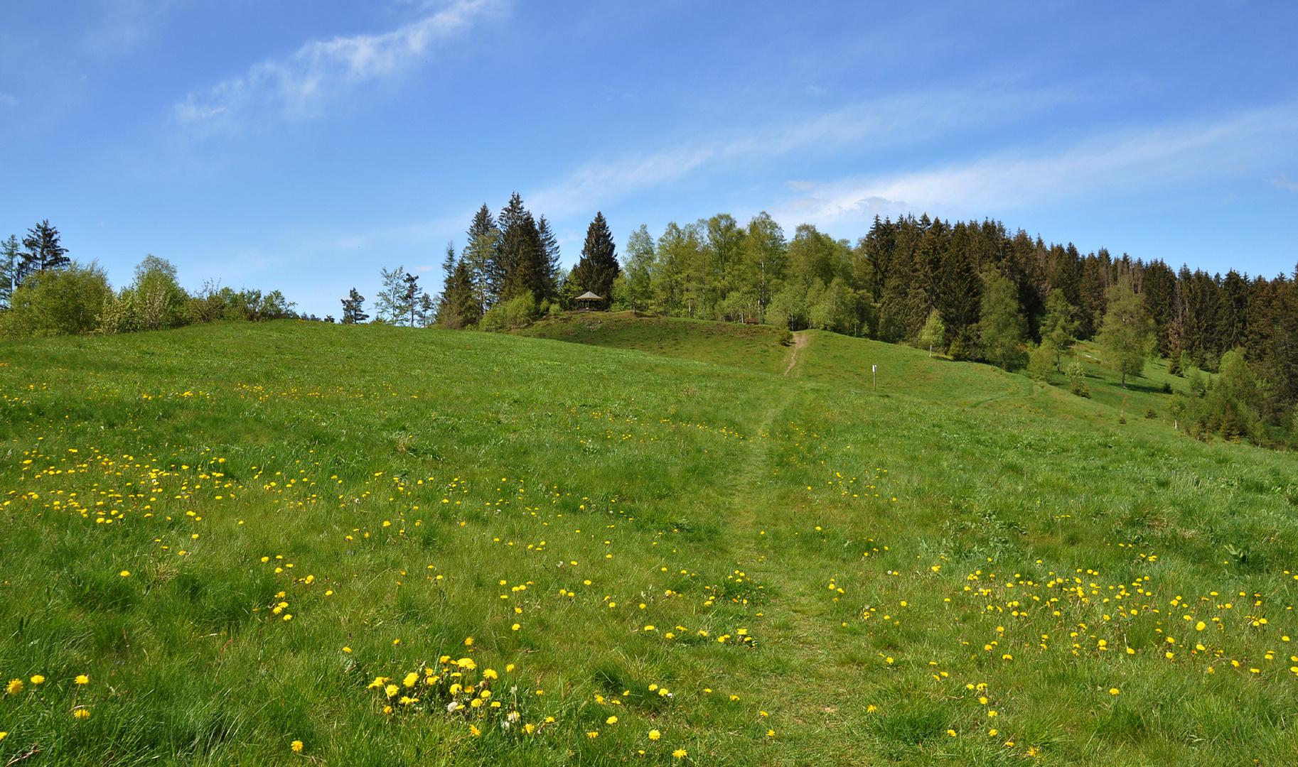 Wanderwege 3