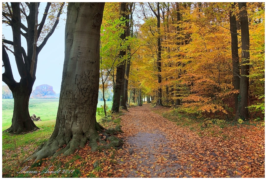 Wanderwege in Worpswede