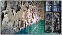Wandfarbe, Fliesen und Ranken am Fenster