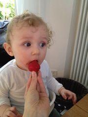 Wann gibt`s denn endlich Erdbeeren?