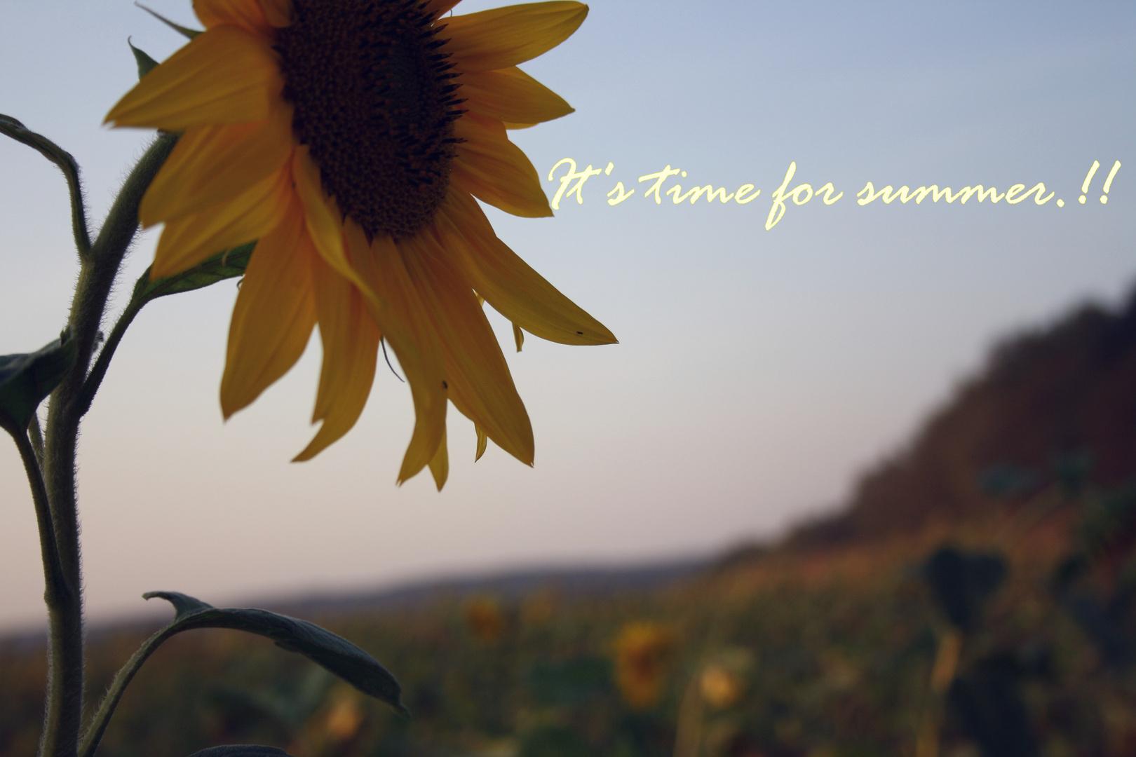 wann wird es endlich wieder Sommer.?