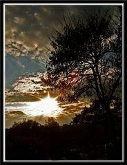 warm autumnal evenings