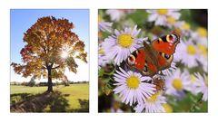 warme Herbsttage