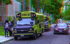 Wartende Schulbusse in Toronto 3-D