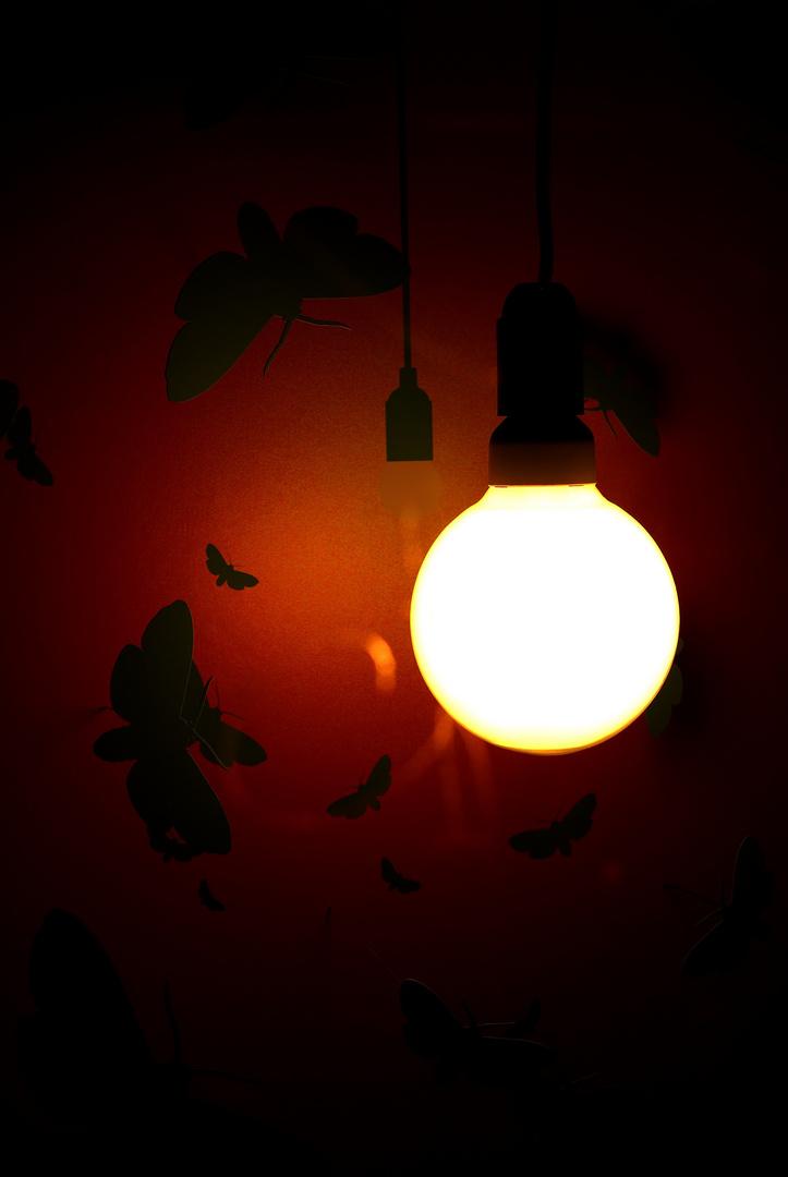 Warum Fliegen Motten Ins Licht Foto Bild Kunstfotografie Kultur Kleinkunst Museumsnacht Bilder Auf Fotocommunity