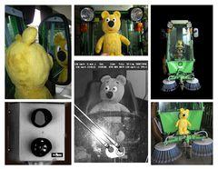 Warum wurde der gelbe Bär geblitzt ...?