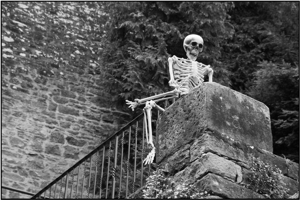 was bleibt...........Knochen