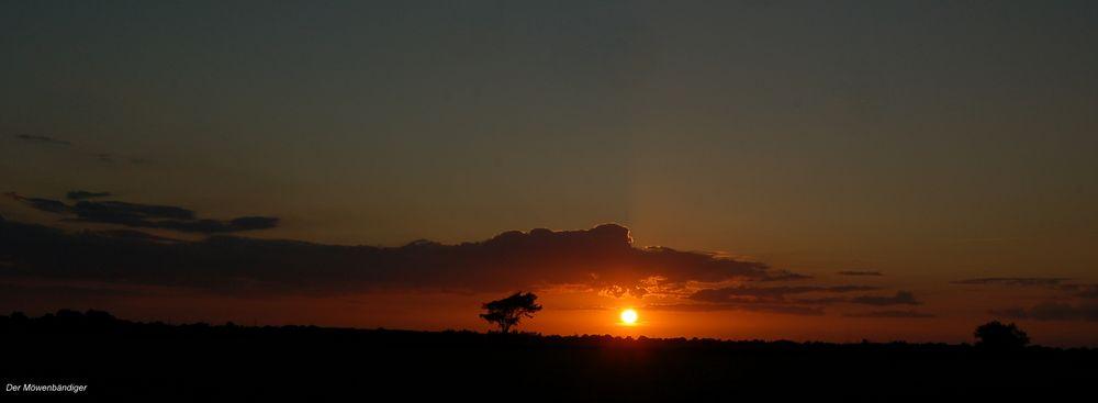 Was brauch ich Afrika , ich bleib in Schleswig-Holstein