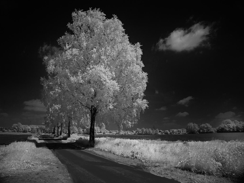 Was der Winter kann, kann der Sommer auch!..................#2276:26/50