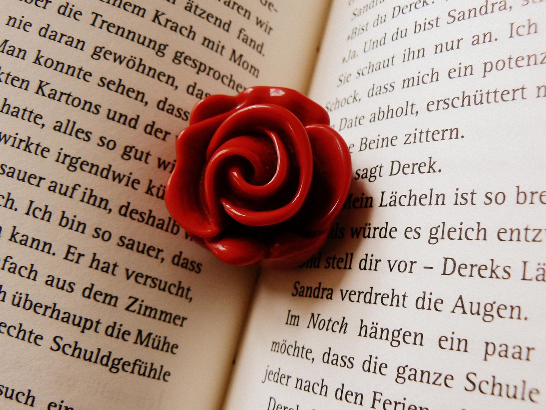 Was einem beim öffnen eines Buches ,so alles entgegen kommt.