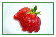 Was für ein Tierchen ist meine Erdbeere?