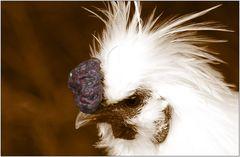 ... was hat das Huhn für Knubbel? ...