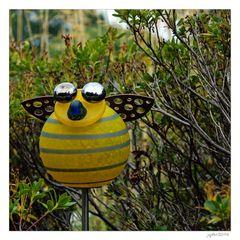 Was ist das für ein Tag, wenn dir am frühen Morgen die Biene Maja schon begegnet...
