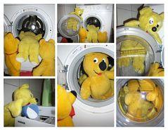 Was macht der gelbe Bär zur Zeit...?