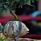 Was macht ein Fisch ohne Wasser...