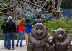 Was sich der Orang  Utan im Hintergrund sitzend wohl denkt ??? ;o))